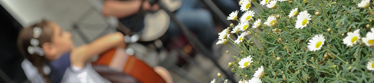 Note in kitara